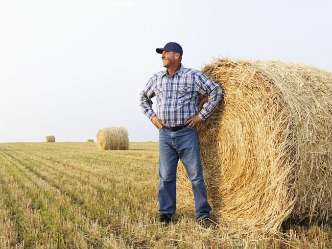 Tani kredyt dla rolnika